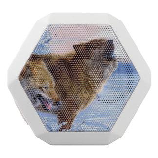 2匹のアメリカアカオオカミの絵を描くこと ホワイトBluetoothスピーカー