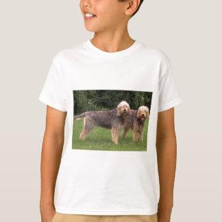 2匹のカワウソ猟犬full.png tシャツ