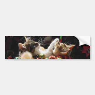 2匹のクリスマスの子猫猫、一緒の子ネコ、バスケット バンパーステッカー