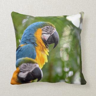 2匹のコンゴウインコの背部焦点の鳥のイメージc.jpg クッション