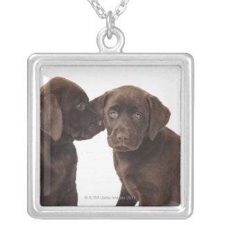 2匹のチョコレートラブラドル・レトリーバー犬の子犬 シルバープレートネックレス