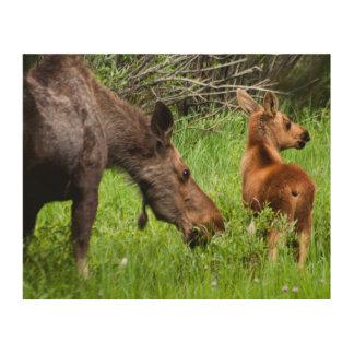 2匹の注意深いアメリカヘラジカの母および赤ん坊 ウッドウォールアート