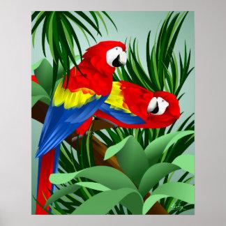 2匹の深紅のコンゴウインコ ポスター