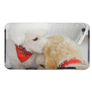 2匹の犬のクローズアップ Case-Mate iPod TOUCH ケース