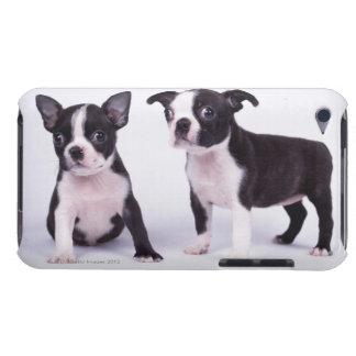 2匹の白黒子犬 Case-Mate iPod TOUCH ケース