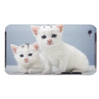 2匹の非常に若く白い子ネコは好奇心をもって凝視します Case-Mate iPod TOUCH ケース