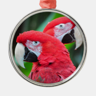 2羽の多彩なコンゴウインコのオウム メタルオーナメント