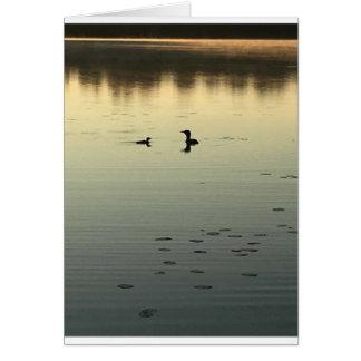 2羽の水潜り鳥 カード