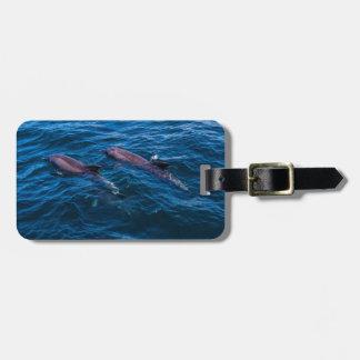 2頭のバンドウイルカ-荷物のラベル ラゲッジタグ
