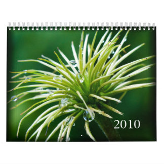 2010色写真撮影のカレンダー カレンダー