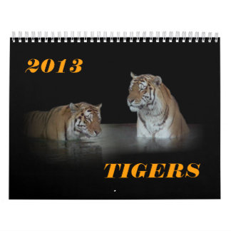 """2013年の""""トラ""""のカレンダー カレンダー"""