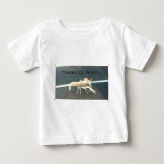 20150917_121817t1.jpg ベビーTシャツ