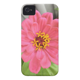 2015-06-22 17.51.11.jpg Case-Mate iPhone 4 ケース