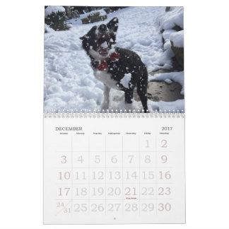 2017ボーダーコリーのカレンダー カレンダー