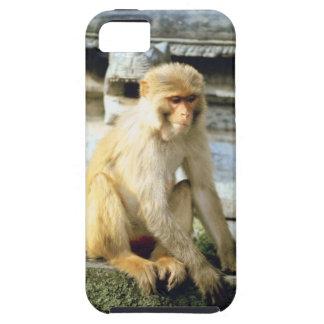 23884652 iPhone SE/5/5s ケース
