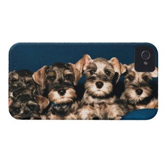 24117057 Case-Mate iPhone 4 ケース