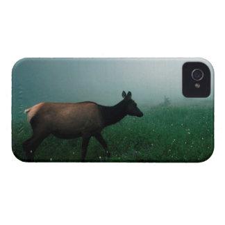 24121885 Case-Mate iPhone 4 ケース