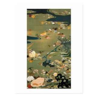 24. 貝甲図、若冲の貝、Jakuchūの日本芸術 ポストカード