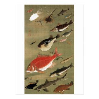 28. 群魚図、若冲のさまざまな魚、Jakuchūの日本芸術 ポストカード