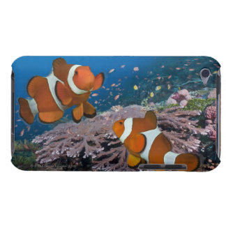 2 Clownfish Case-Mate iPod Touch ケース