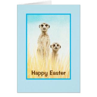 2 Meerkatsイースターの挨拶状 カード