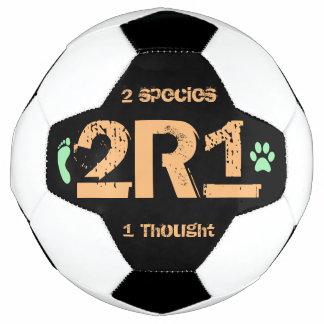 2R1 (考えられる2つの種1) サッカーボール