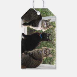 3つの猫の友人のギフトのラベル ギフトタグ