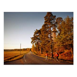 3つを自転車に乗ること ポストカード