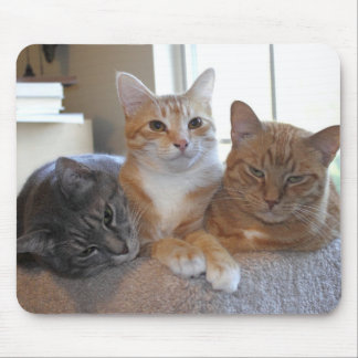 3の群集 マウスパッド