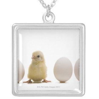 3個の卵を持つベビーのひよこのクローズアップ シルバープレートネックレス