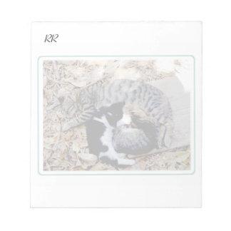 3匹のかわいい猫は眠ったカールしました ノートパッド