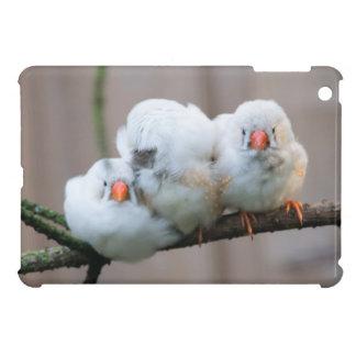 3匹のキンカチョウ iPad MINI カバー