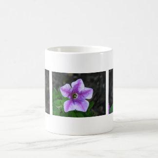 3匹の紫色のペチュニア コーヒーマグカップ