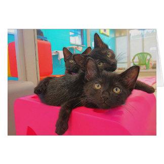 3匹の黒い子ネコ カード
