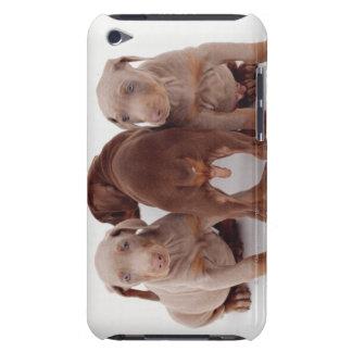 3匹の(犬)ドーベルマン・ピンシェルの子犬 Case-Mate iPod TOUCH ケース