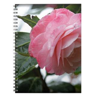 3月雨の後 ノートブック