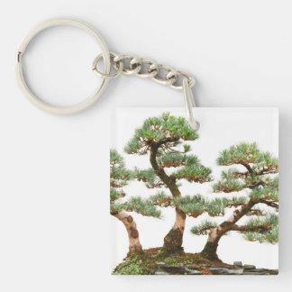 3本のマツ盆栽の木 キーホルダー