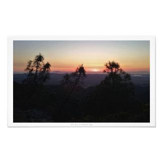 """""""3本の木""""、日没の自然の装飾 フォトプリント"""