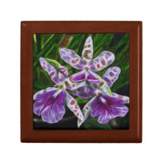 3本の紫色の蘭 ギフトボックス