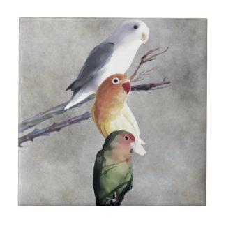 3羽のかわいらしい仲の良い恋人同士 タイル
