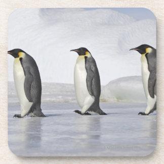 3羽のコウテイペンギン、雪の丘の島 コースター
