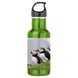 3羽のツノメドリ ウォーターボトル