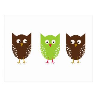 3羽のフクロウのクリスマスの郵便はがき ポストカード
