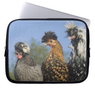 3羽のポーランドの鶏- ラップトップスリーブ
