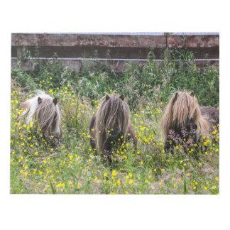 3頭のシェトランド諸島子馬の種馬のノート ノートパッド