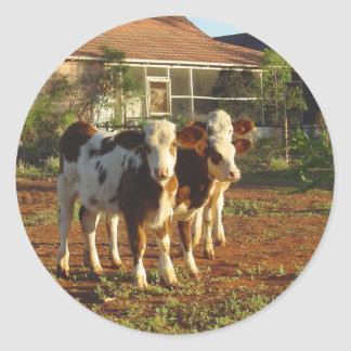 3頭の小さい子牛 ラウンドシール