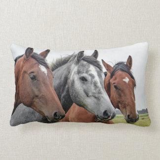 3頭の馬 ランバークッション