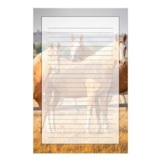 3頭のPalominoの子馬 便箋