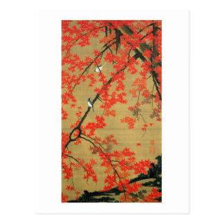 30. 紅葉小禽図、若冲のかえで及び小さい鳥、Jakuchū ポストカード