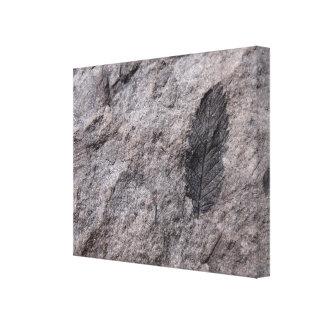 350,000,000 Yr。 古い植物の化石の写真のプリント キャンバスプリント